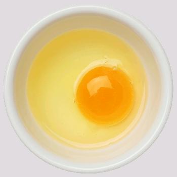 Foto: aufgeschlagenes Ei